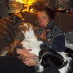 Honden - Ninio en Fabio, kater meneet Prins
