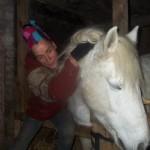 Paard - Claudi 05