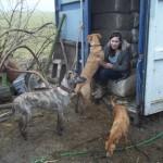 Honden - Ninio, Mannaz en Quita