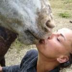 Norma en paard