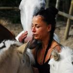 Norma - paarden (2)