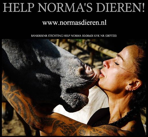 norma cover
