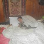 Norma met honden in bed
