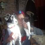 Hond - Dee Deezou (1)