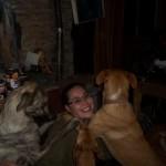 Honden - Irene met Ninja, Quita en Mannaz